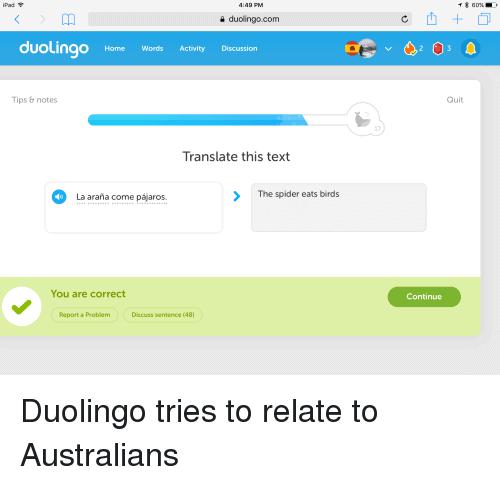 Duolingo Memes - duolingo spider bird