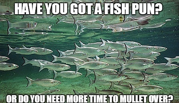 Beach Puns - Mullet over