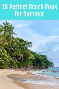 15 Perfect Beach Puns for Summer