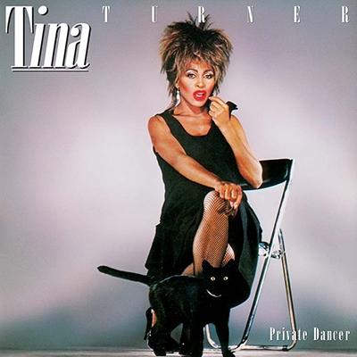 Best Vinyl Rock Albums - Tina Turner Private Dancer