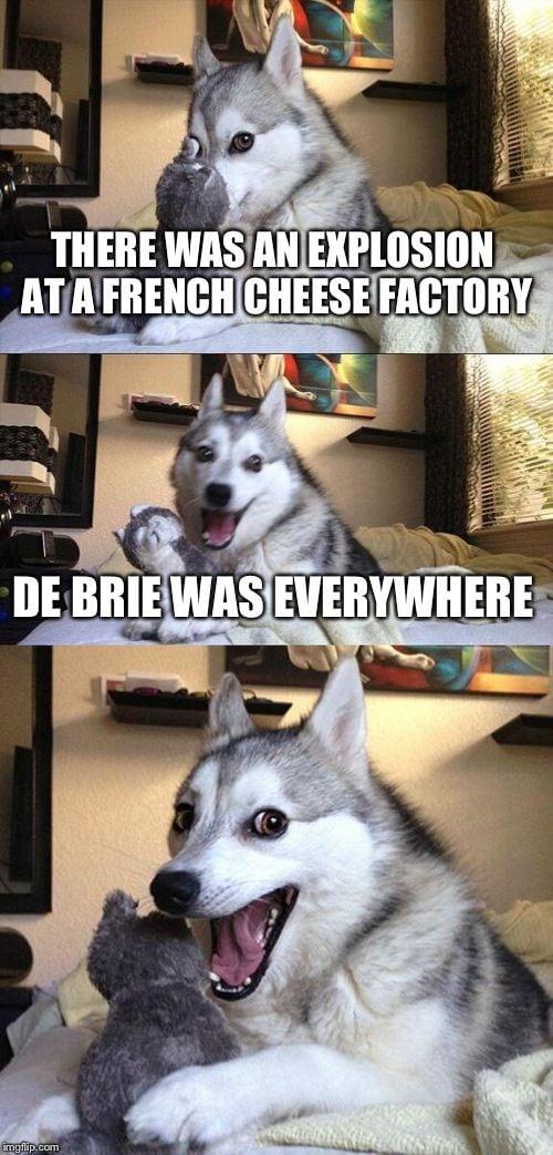 Cheese Puns - De Brie