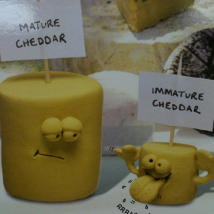 cheese puns - mature cheddar
