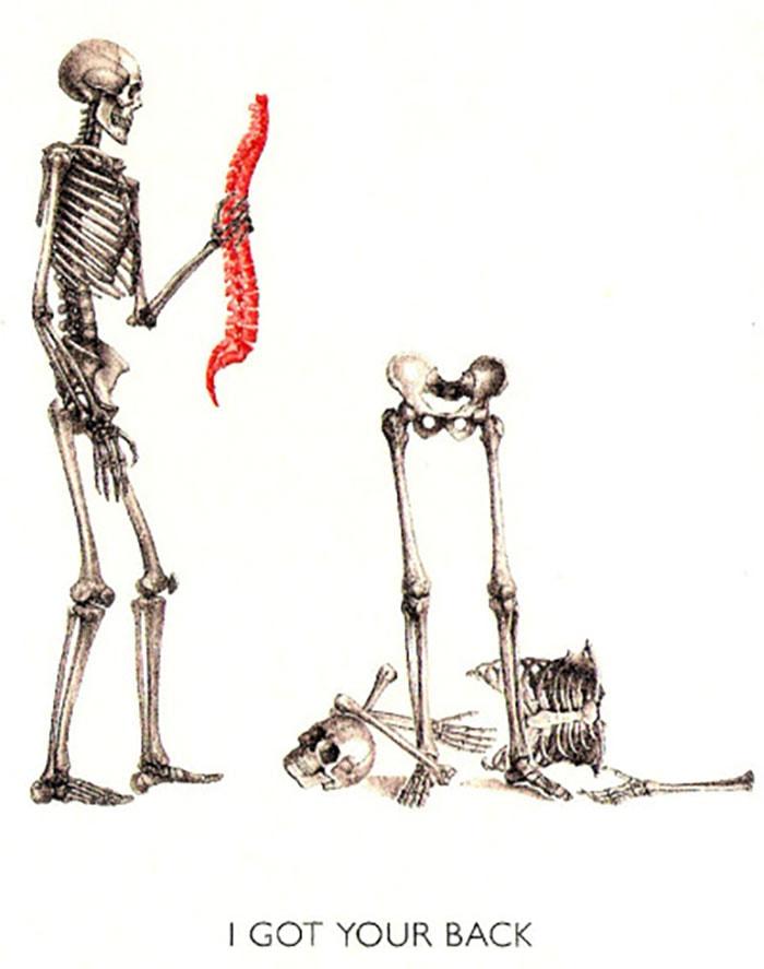 Bone Puns - Got Your Back