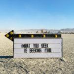 10 Principles of Burning Man - Olivia Steele What You Seek is Seeking You
