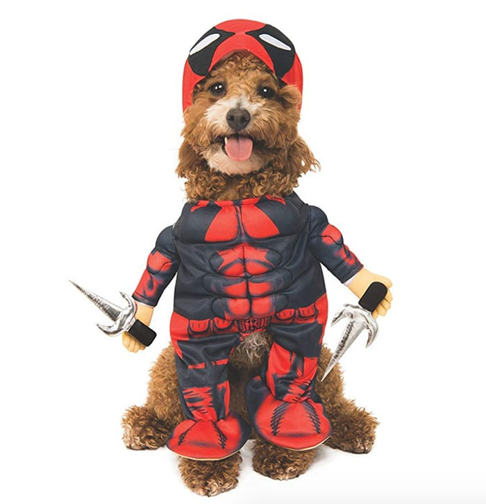 Funny Dog Costumes for Halloween - Deadpool