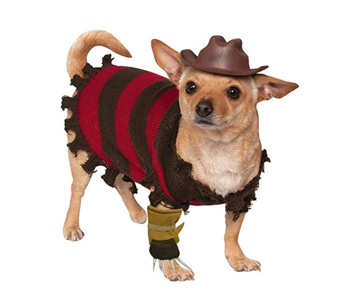 Funny Dog Costumes for Halloween - Freddy Krueger Nightmare Before Elm Street