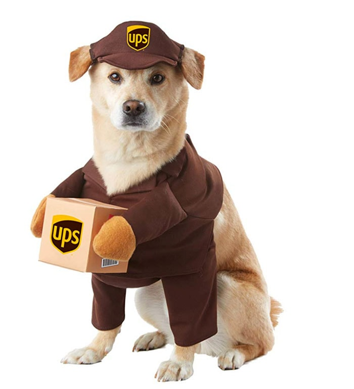 Funny Dog Costumes for Halloween - UPS Deliveryperson