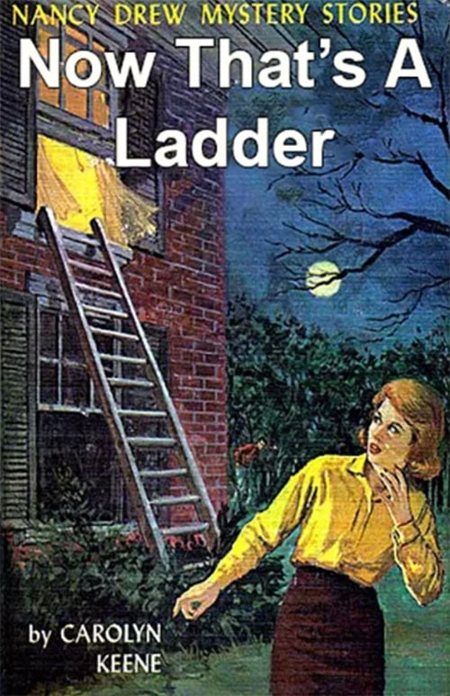 Nancy Drew Fake Book Covers - Now That's a Ladder