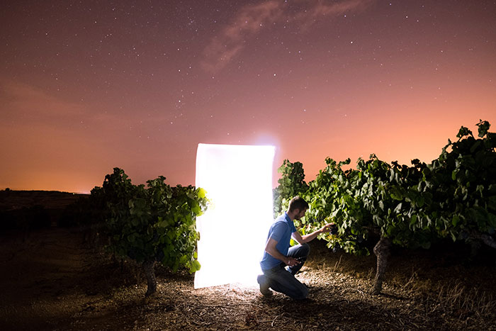 Can You Bring Wine on a Plane - man with light in vineyard
