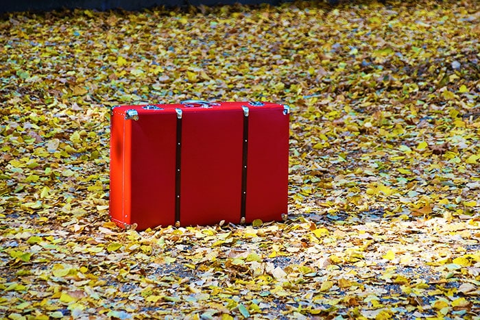 Lost Luggage - red bag on leaves