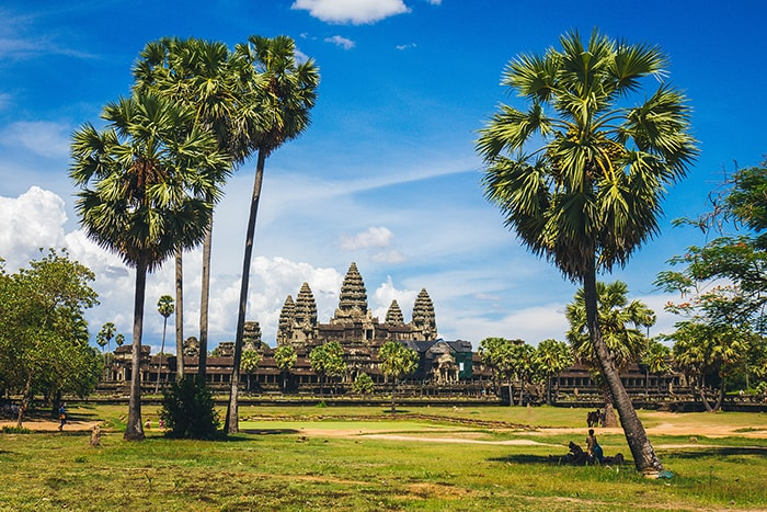 How to Get a Passport - Cambodia in Angkor Wat