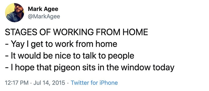 Working From Home Memes - Pigeon