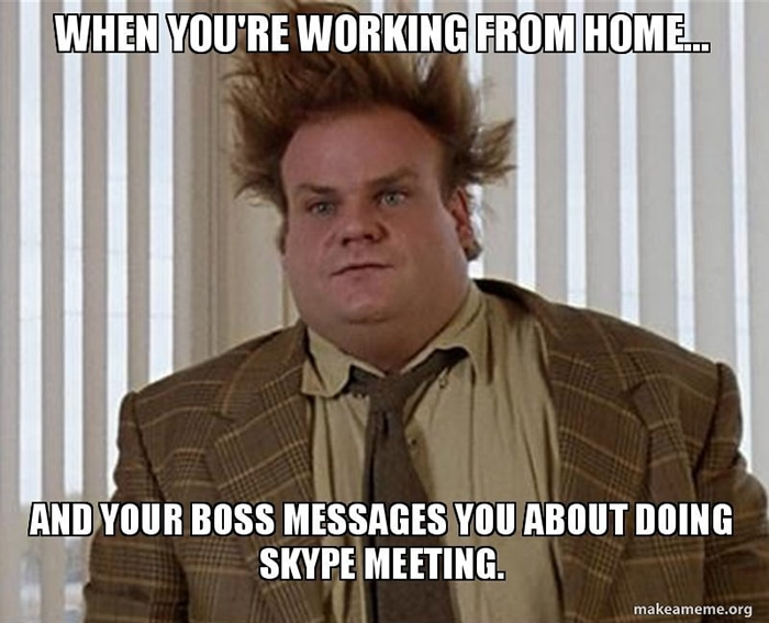 Working from Home Memes - Skype