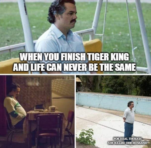 tiger king memes never the same