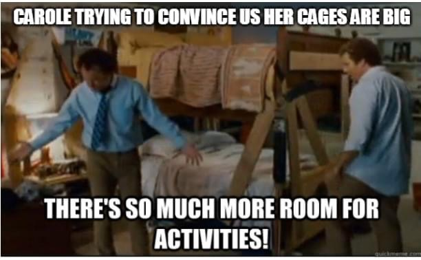 carole baskin cages