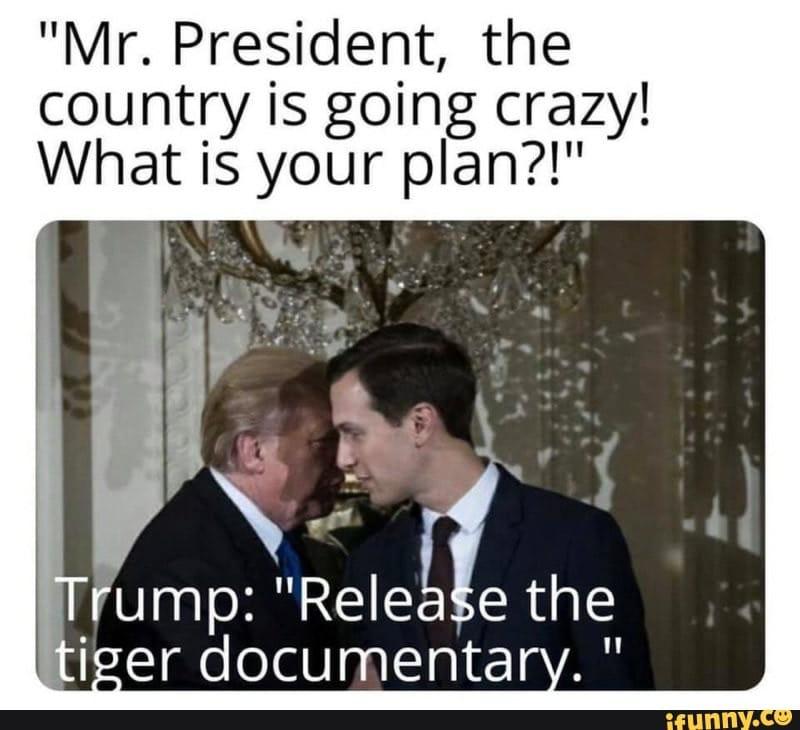 tiger king memes pandemic distraction