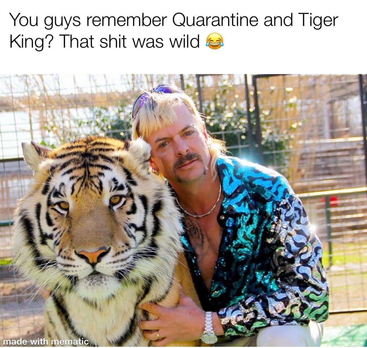 tiger king memes quarantine