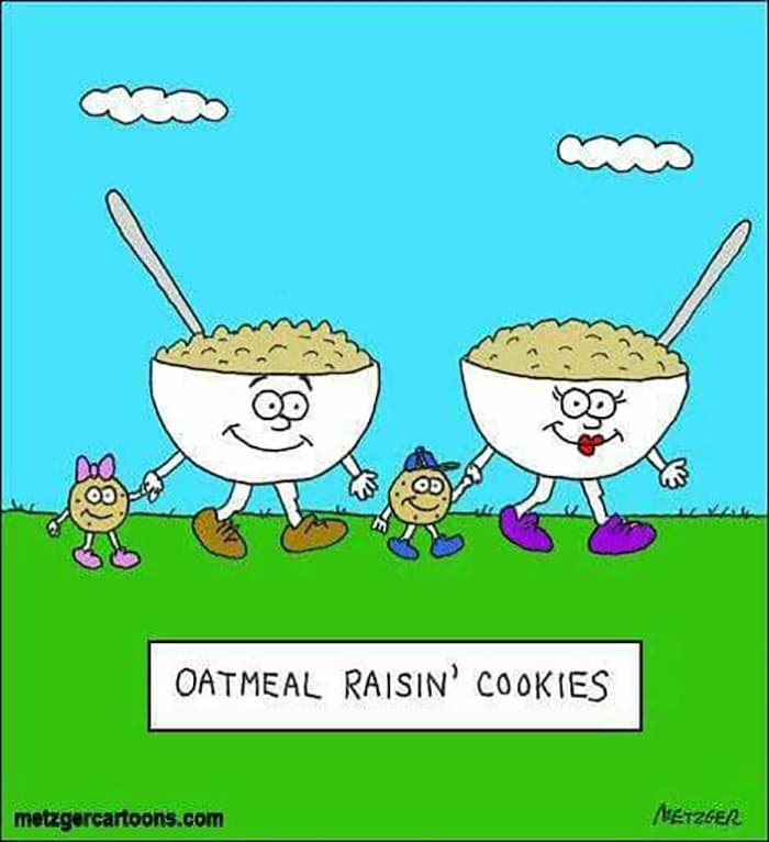 Cookie Puns - Oatmeal Raisin