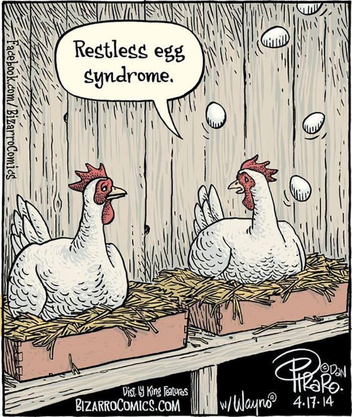 Restless Egg Syndrome
