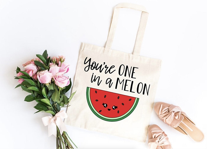 Watermelon Puns - one in a melon