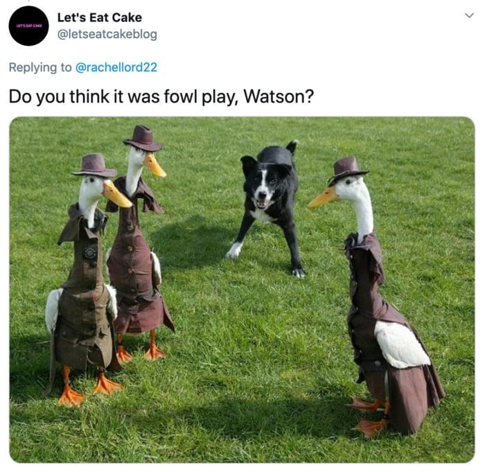 Duck Fashion Show - Sherlock Holmes