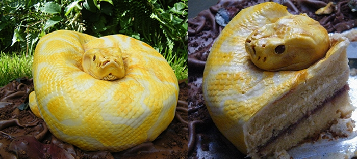 These Are All Cakes - Snake Cake