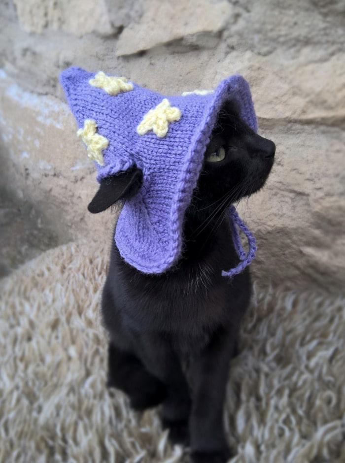 Cats Wearing Hats - Wizard