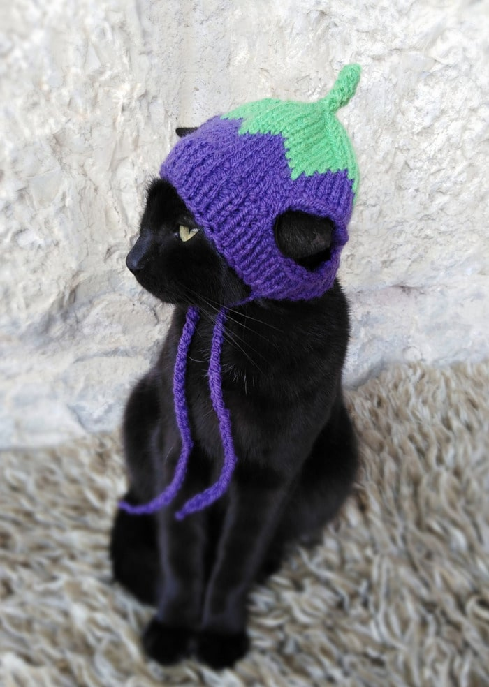 Cats Wearing Hats - Eggplant
