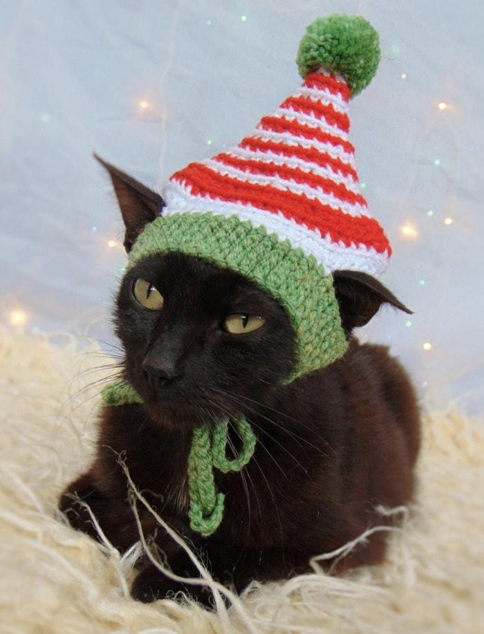 Cats Wearing Hats - Elf