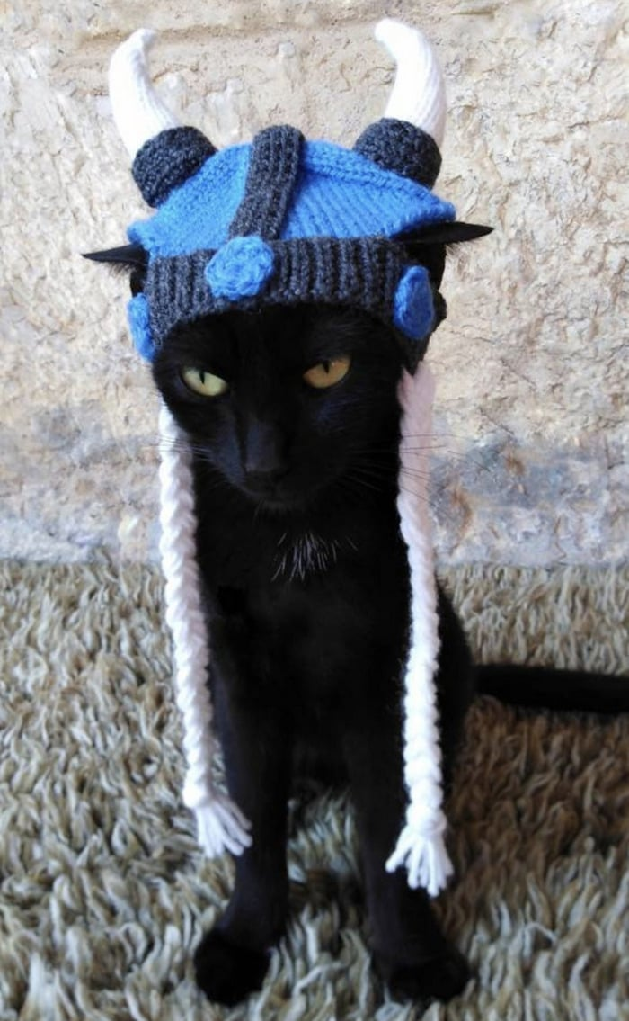 Cats Wearing Hats - Viking Helmet