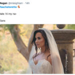 Bachelorette Memes - wedding dress