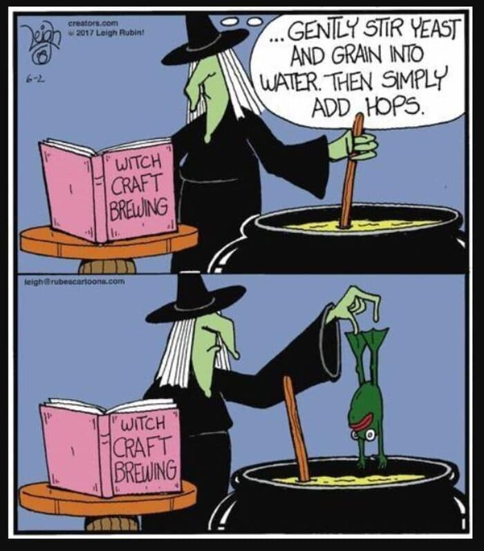 Witch puns - Gently stir yeast and grain into water then simply add hops. Witch adds a frog