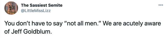 Funny Tweets from Women This Week - Jeff Goldblum