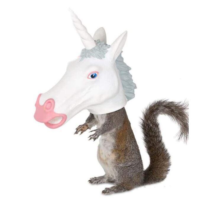 Cheap Gift Ideas - Unicorn Squirrel Feeder