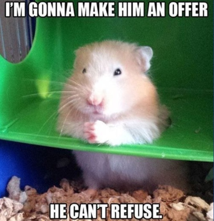 Hamster - Offer He Can't Refuse