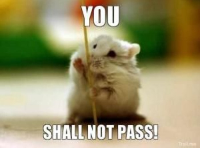 Hamster You Shall Not Pass