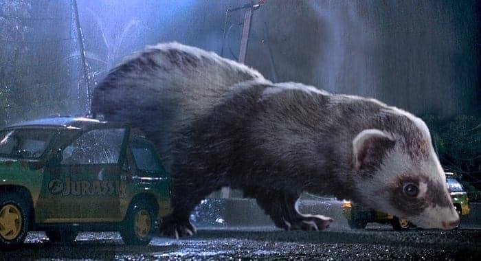 Jurassic Park Dinosaurs Replaced By Ferrets - T Rex