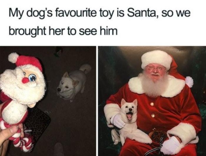 Dog's Favorite Toy is Santa