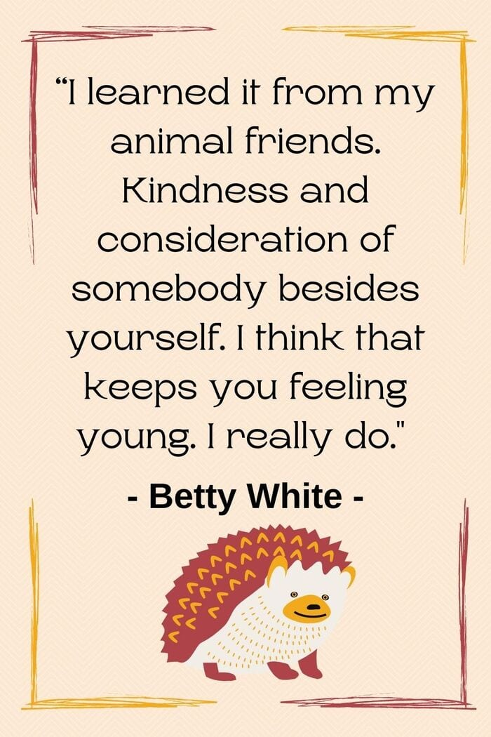 Betty White Quotes - Be kind like animals