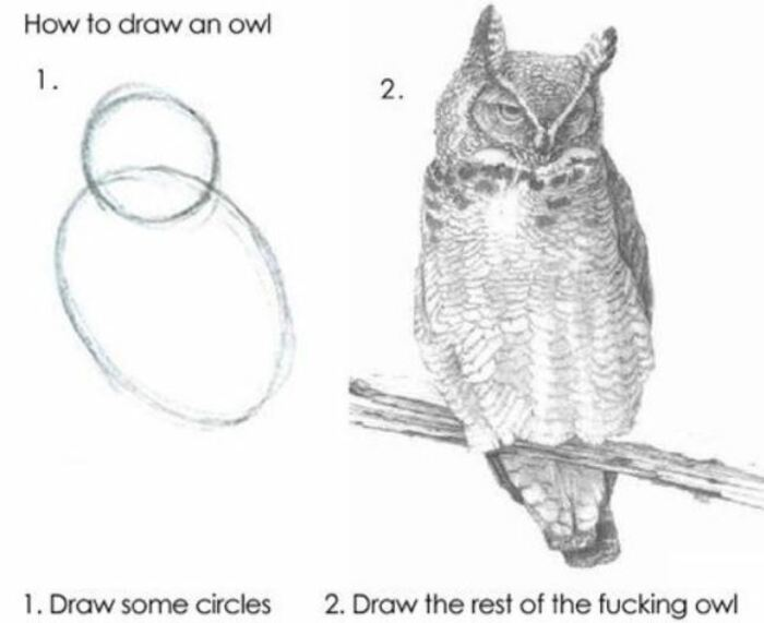 Owl Memes - How to draw an owl, draw 2 circles, then the rest of the owl