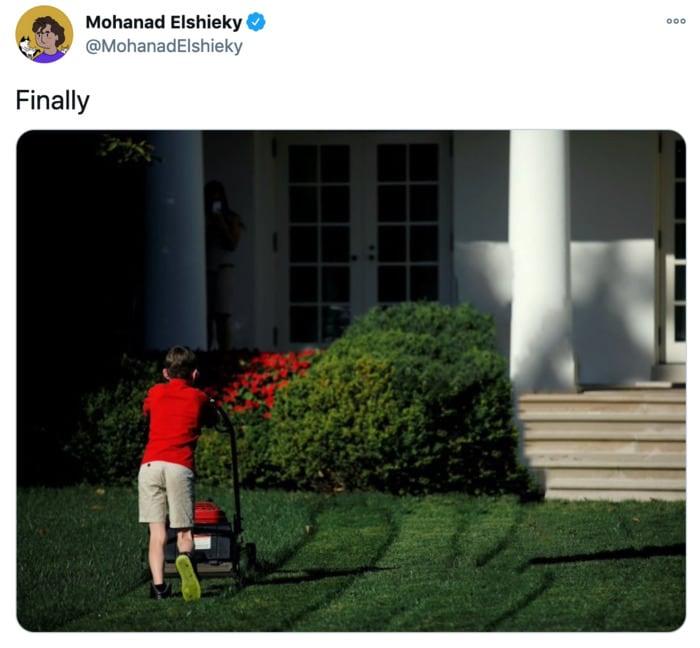 Trump Twitter Ban Memes - Boy Mowing Lawn
