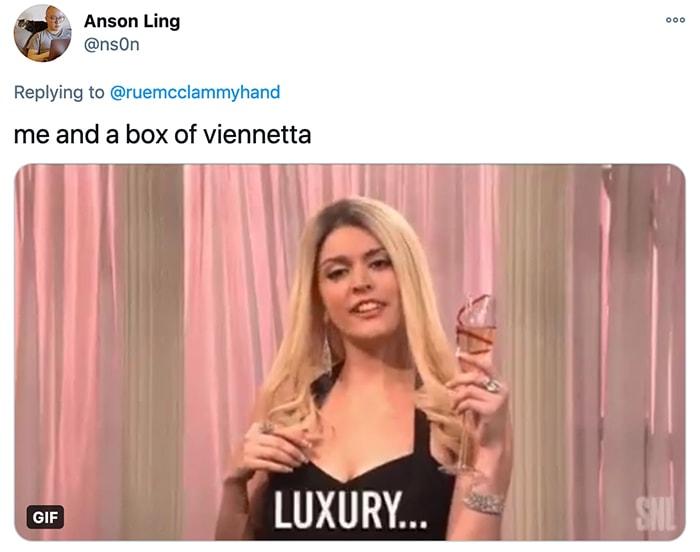 Viennetta Ice Cream Cake - luxury SNL