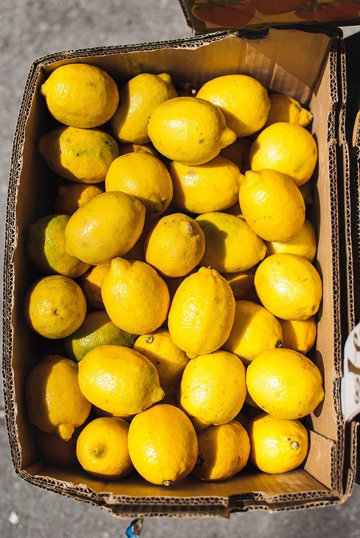 Gin Botanicals - Lemon