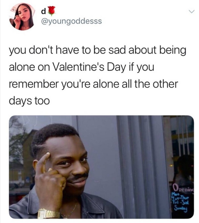 Valentines Day Memes - alone everyday