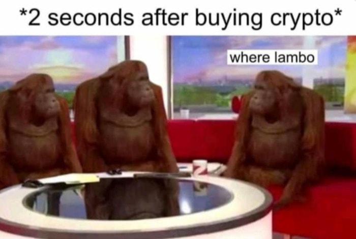 Crypto Memes - Where Lambo