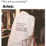 Aries Memes - expensive taste