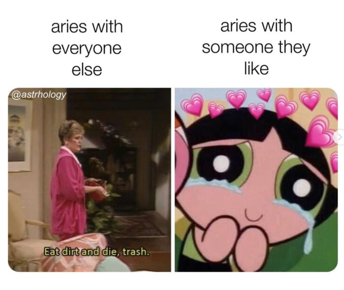 Aries Memes - with someone they like