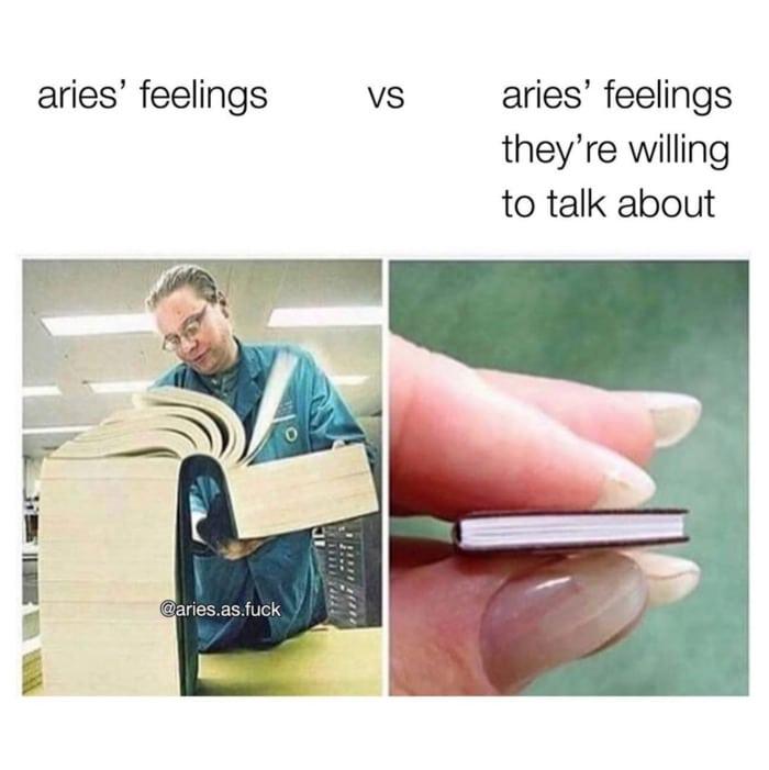 Aries Memes - feelings