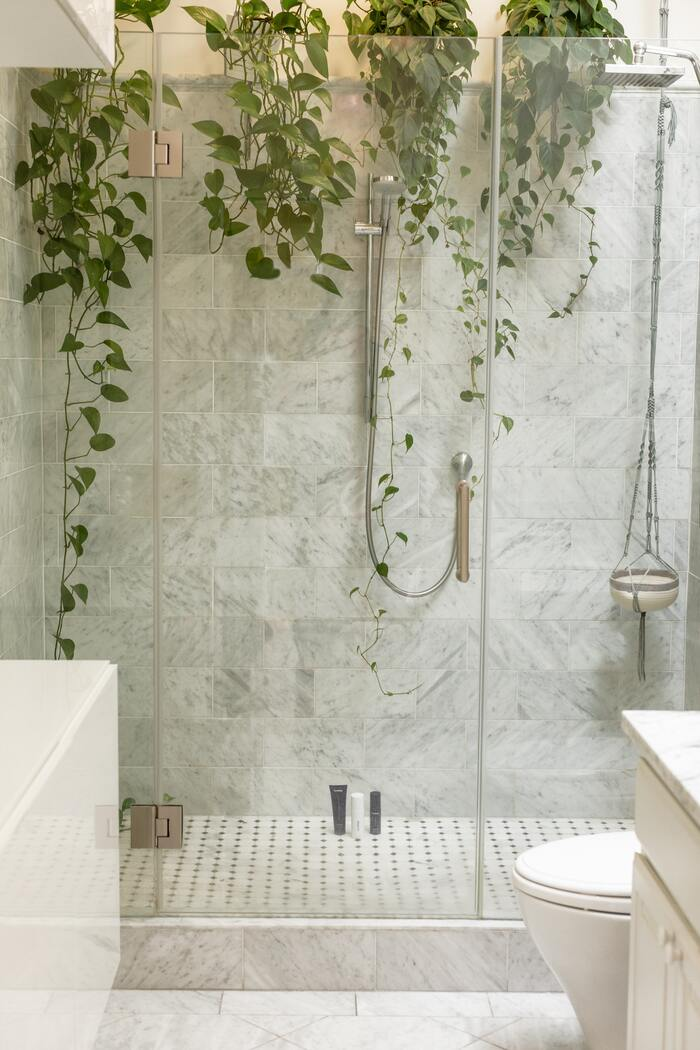 Shower Sex Positions - plants in shower