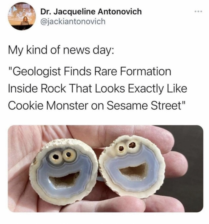 Wholesome Memes - Cookie Monster rock